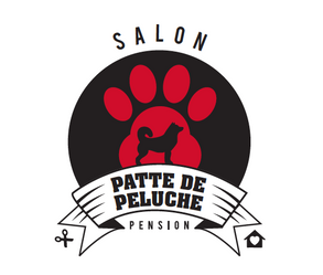Salon Patte de Peluche